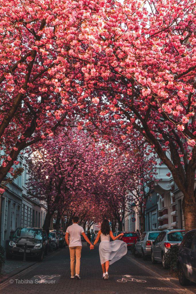 Best German Destinations |Germany Travel | Germany Tourism |Bonn, Germany |Deutschland Tourismus