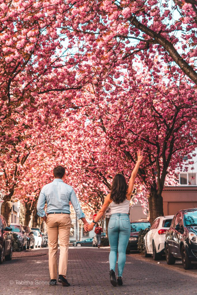 Cherry Blossoms in Bonn, Germany | Travel Couple Goals