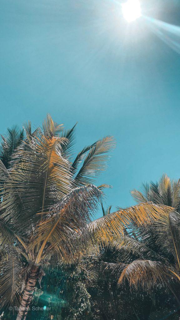 Tropical Getaway | Caribbean Getaway | Guadeloupe