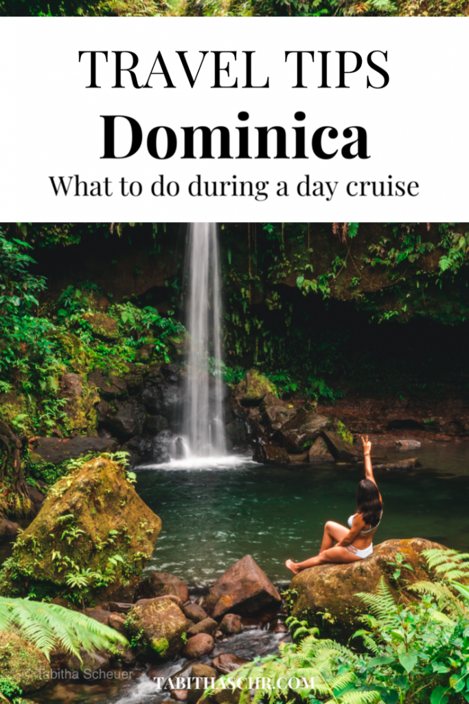 What to do in Dominica during a day cruise