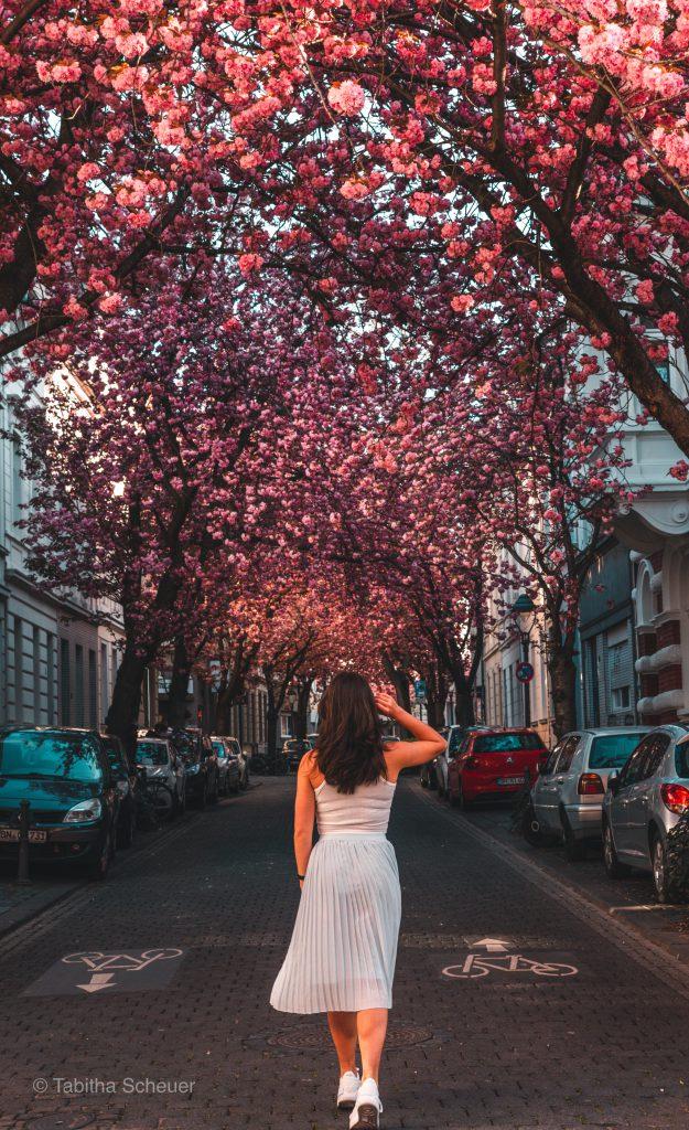 Women who travel solo |Bonn solo travel |Germany solo travel